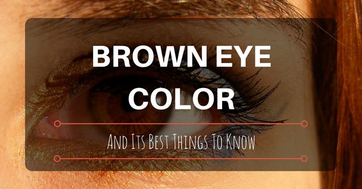 Brown Eye Color And Its Best Things To Know